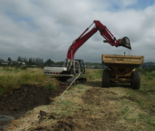 Qwuloolt Estuary Restoration Project of the Tulalip Tribes - New Outlet Channel Work